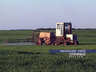 В колхозах стали проводить химзащиту растений с использованием гербицидов