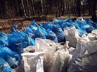 В лесах под Воронежем объявлена генеральная уборка