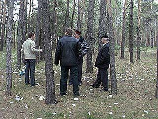В лесных массивах области провели рейд
