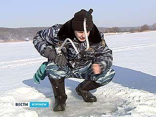 В Лискинском и Рамонском районах из-за морозов начался замор рыбы