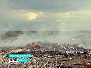 В Лискинском районе горят свалки - дым идёт, огонь не тушат