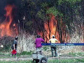 В Лискинском районе из-за пожара произошло массовое отключение света