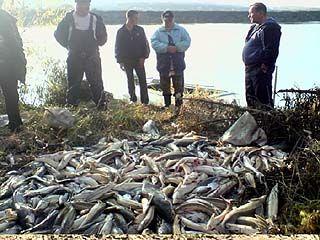 В Лискинском районе на реке Дон задержана группа браконьеров