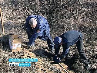 В Нижнедевицком районе спасатели уничтожали крупнейший в области склад боеприпасов