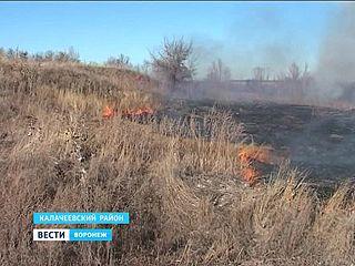 В Новомеловатке вновь пожары - горят трава и камыши
