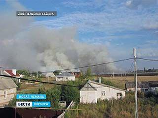 В Новой Усмани горели четыре гектара сухой травы