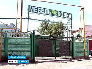 В Новой Усмани школьница убила старика за мобильный телефон