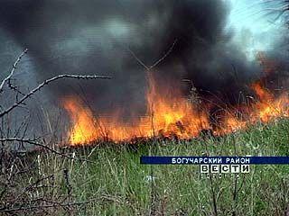 В области каждый день регистрируют до 30 возгораний сухой травы