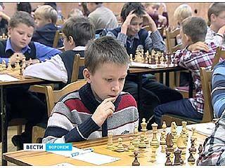 В областном шахматном клубе стартовал этап Кубка России