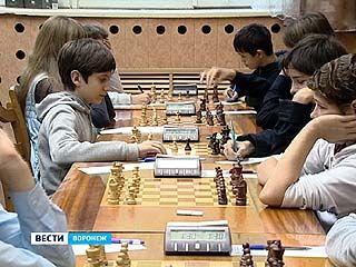 В областном шахматном клубе завершился этап Кубка России среди детей