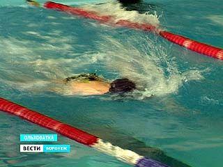 В Ольховатке прошли соревнования по плаванию, организованные региональным управлением наркоконтроля