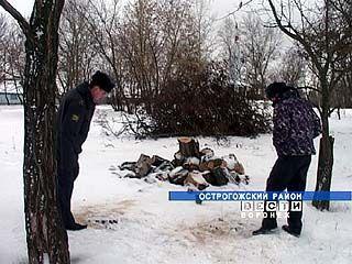 В Острогожском районе память о Героях войны оценили в 1,5 тысячи рублей
