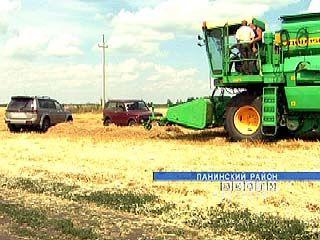 В Панинском районе разразился очередной земельный скандал