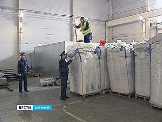 В партии семян из Италии инспекторы  обнаружили  карантинный сорняк повилику полевую