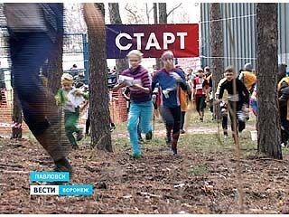 В Павловске открылись Всероссийские соревнования по спортивному ориентированию
