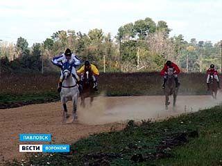 В Павловске впервые прошли конные скачки