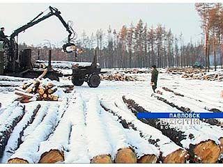 В Павловском лесхозе ликвидируют последствия лесных пожаров