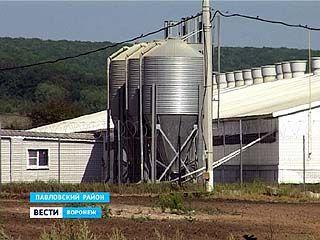 В Павловском районе идёт расследование трагедии, которая произошла в селе Петровка