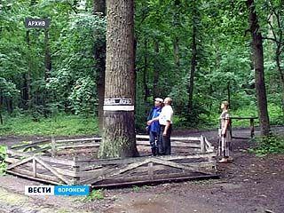 В Павловском районе появились 4 новых памятника природы