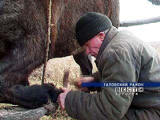 В поселке Вознесеновка проживает единственный на всю округу кузнец