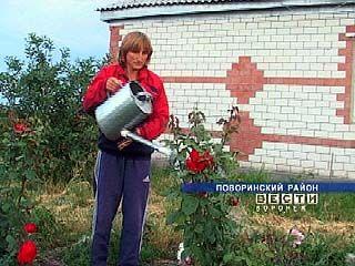 """В Поворинском районе есть райское место под названием """"Роза"""""""