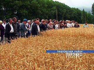 В Поворинском районе пройдет семинар агрономов
