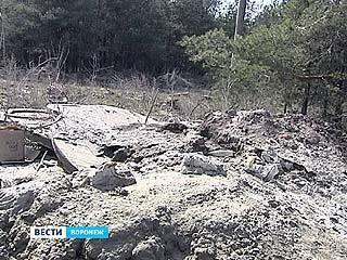 В районе улицы 9 Января бетономешалки сливают остатки раствора в лес