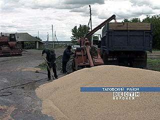В селе Абрамовка работает восемь КФХ
