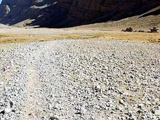 В селе Данцевка потери урожая от засухи составляют до 15 центнеров с гектара