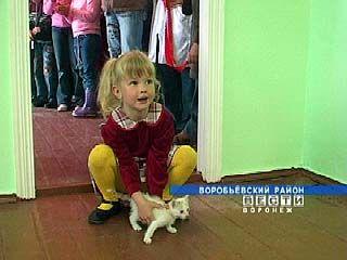 В селе Солонцы состоялось открытие детского сада