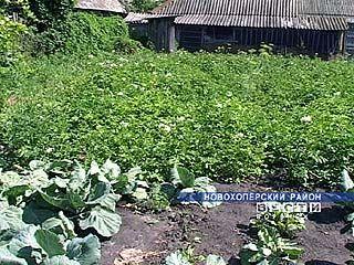 В селе Ярки платят завышенные суммы за пользование землей