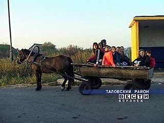 В селе Знаменка  в школу ездят на лошади