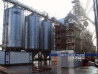 В Семилукском районе приступили к масштабной консервации зерна