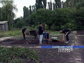 В Таловском районе гибнет коллекция ценных растений