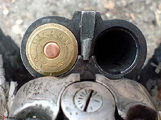 В Терновском районе обстреляли депутата сельсовета