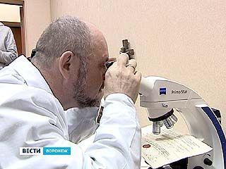 В ВГУ открылся первый в России центр исследования и экспертизы христианских реликвий