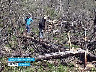В Воробьёвском районе появился новый туристический маршрут