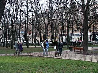 В Воронеж идёт зима