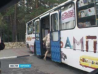 В Воронеж на один день приехал детский книжный автобус