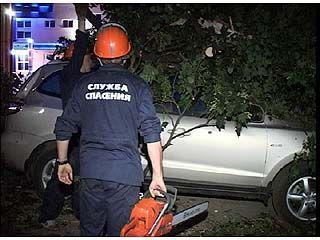 В Воронеже День России закончился ураганом