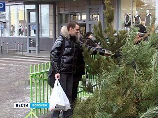 В Воронеже должны заработать 160 ёлочных базаров