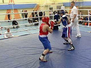 В Воронеже финишировало первенство ЦФО по боксу