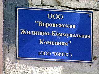 В Воронеже городская инфраструктура оставляет желать много лучшего