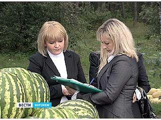 В Воронеже ловили торговцев, которые не хотят работать законно