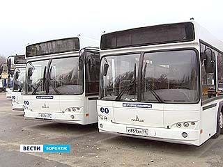 В Воронеже на маршруты вышли новые автобусы большой вместимости