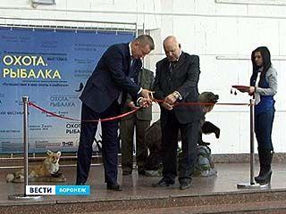В Воронеже открылась специализированная выставка для любителей активного отдыха