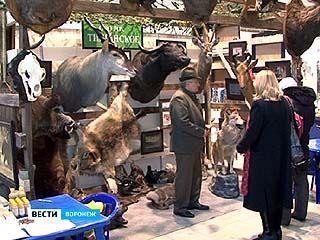 """В Воронеже открылась выставка """"Рыбалка и охота - 2012"""""""