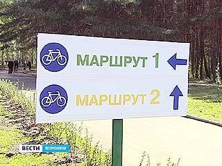 В Воронеже открыли первые велосипедные дорожки