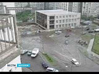 В Воронеже ожидается буйство стихии и ливни всю неделю