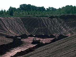 В Воронеже планируют построить завод по переработке ТБО